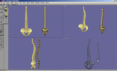 Click image for larger version.  Name:Spine New v Old..jpg Views:22 Size:210.4 KB ID:709