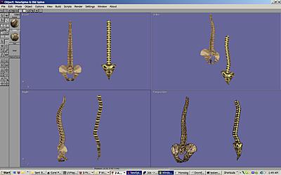 Click image for larger version.  Name:Spine New v Old..jpg Views:22 Size:224.4 KB ID:710