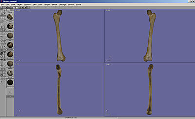 Click image for larger version.  Name:NewFemur..jpg Views:12 Size:164.8 KB ID:723
