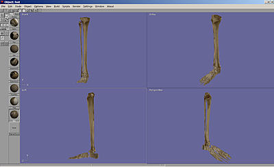 Click image for larger version.  Name:New Leg..jpg Views:23 Size:80.2 KB ID:724